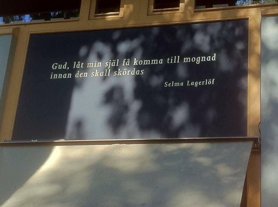 selma citat